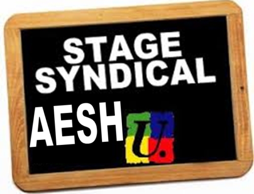 AESH stage syndical 21 mai
