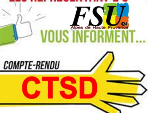 Compte rendu du CTSD du 29 juin (carte scolaire, AESH, PIAL…)